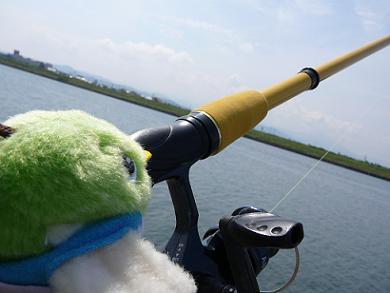 釣れるかなぁ!?