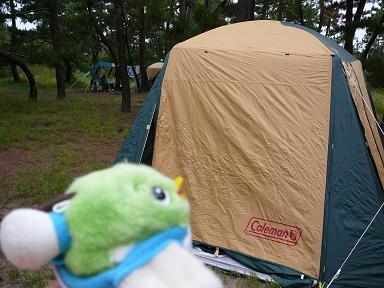 キャンプに行ったよ!