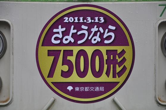_DSC1346k.jpg