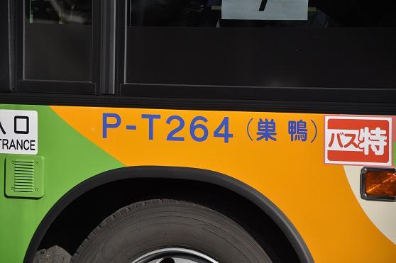 _DSC7249k.jpg