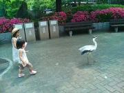 とべ動物園1