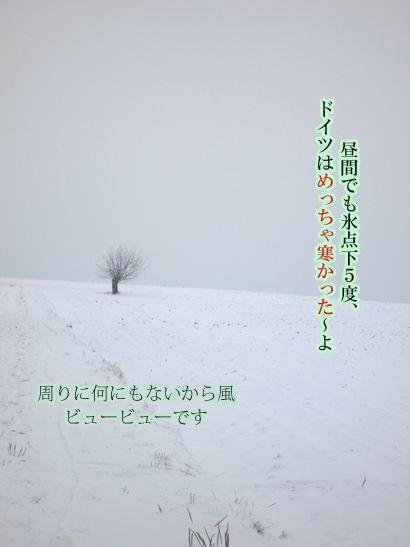 06Januar09-06のコピー