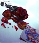 heart/fate
