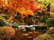 尾関山公園_R