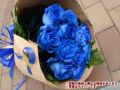 blueroses6517.jpg