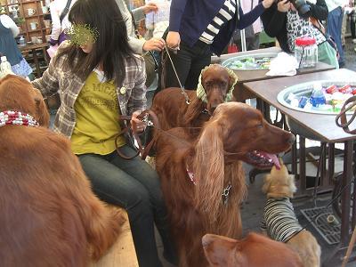 益子春の陶器市2009 028-1