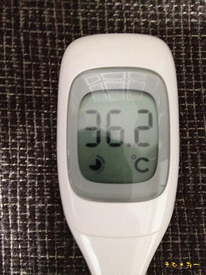体温4-6b