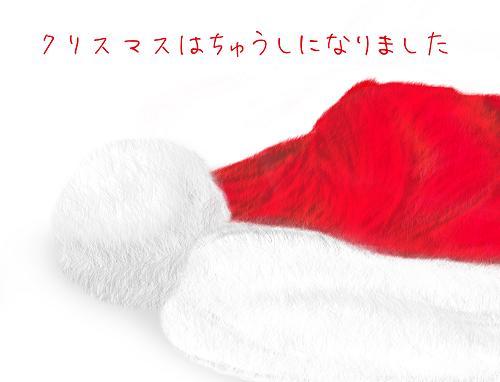 クリスマスはちゅうしになりました