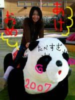 2007パンダ
