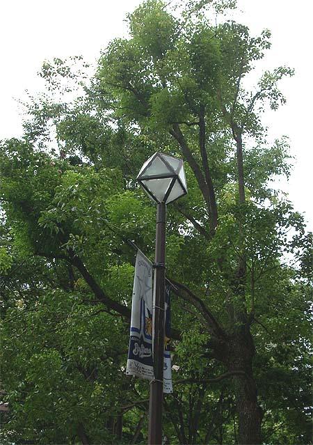 20090711街灯①