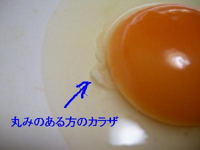 111101_03.jpg