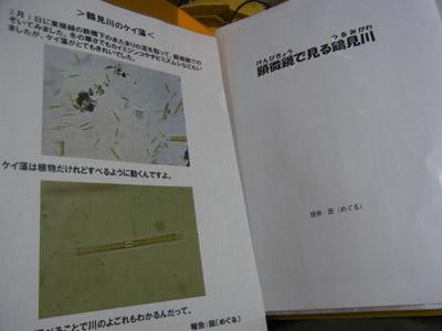 120204a.jpg