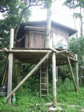 ツリーハウス2