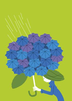 あじさい傘