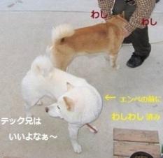 IMG_3574②