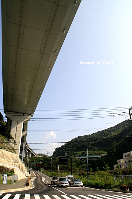 _MG_4104.jpg