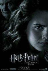 ハリー・ポッターと謎のプリンス⑬