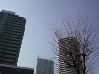 20100131103735.jpg