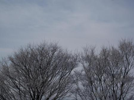 100217雪景色 (4)50