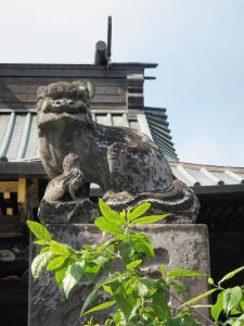 110508雷電神社 (6)50