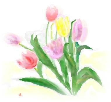 ill-tulip1a.jpg