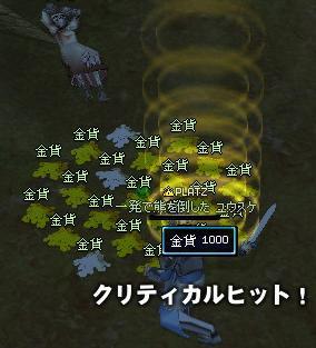 06_06_09-02.jpg