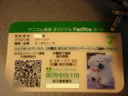 020繝悶Ο繧ー_convert_20100304224753