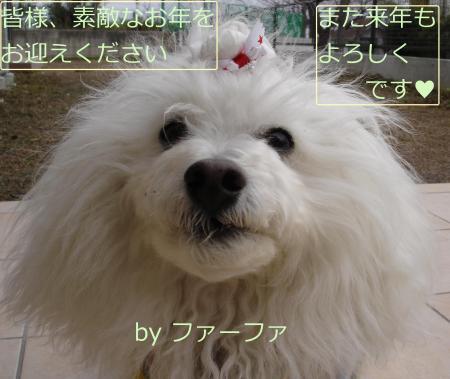 228蟷エ雉�_convert_20101231234933