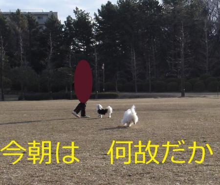 001繝悶Ο繧ー_convert_20110203002009