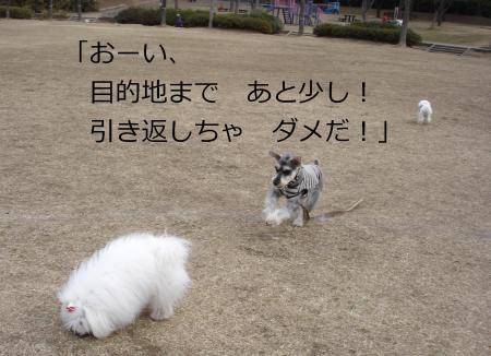012繝悶Ο繧ー_convert_20110203002210