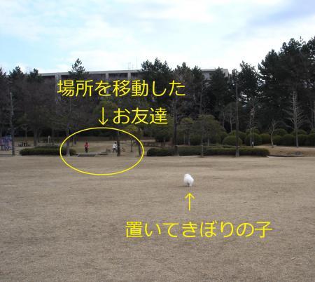 008繝悶Ο繧ー_convert_20110203002119