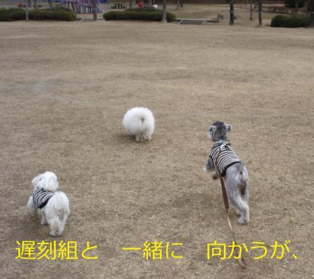 010繝悶Ο繧ー_convert_20110203002135