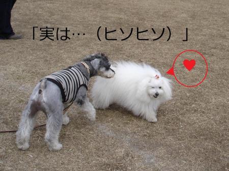 014繝悶Ο繧ー_convert_20110203002243