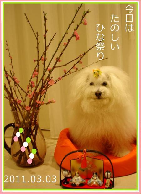 039髮帷・ュ繧垣convert_20110303222939