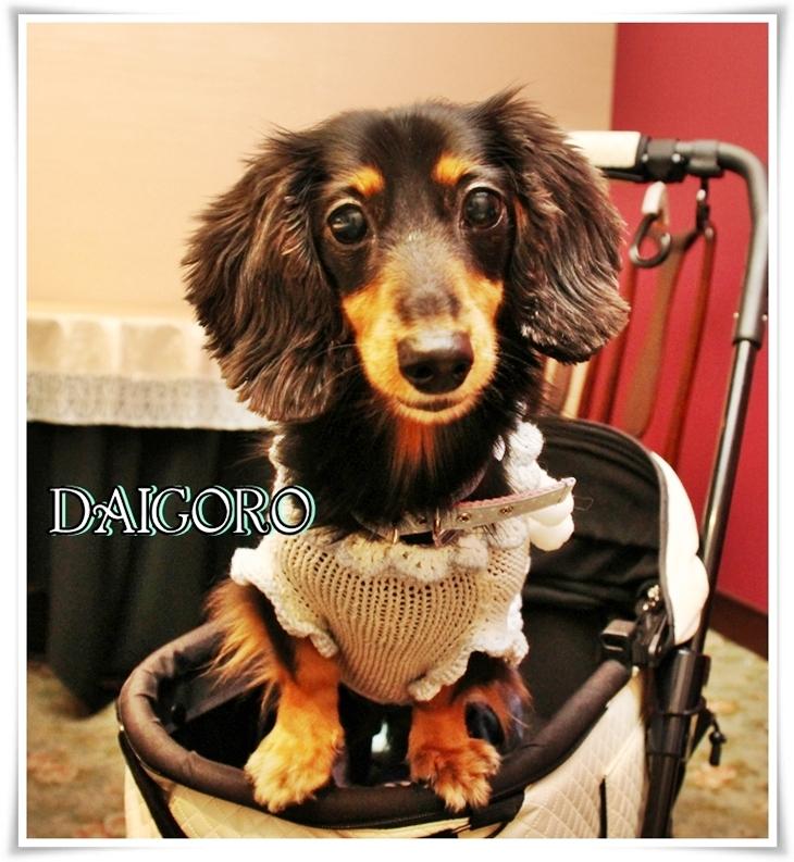 DAIGORO.jpg