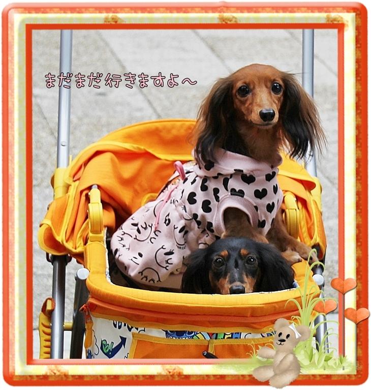 Go!Go!_20101014080817.jpg