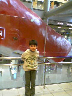 赤いクジラ