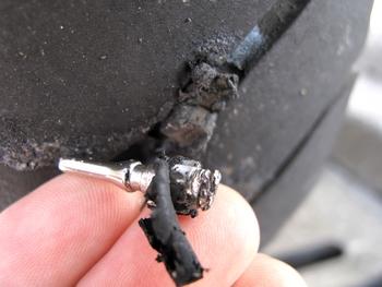 タイヤに突き刺さったムシ