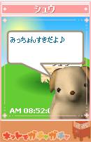 syuki.png