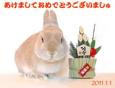 2011-7.jpg