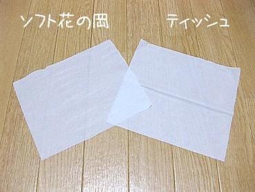 tissue01.jpg