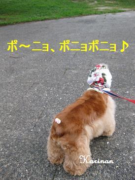 ブログ 8.17 ④ IMG_3140