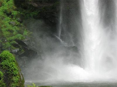 fall-gorou-2