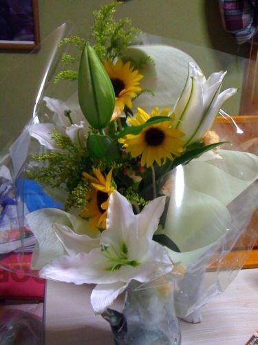 野乃のお花