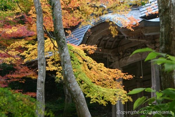 紅葉荘厳寺2