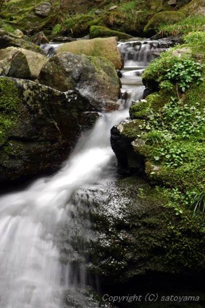 笠形山の滝3