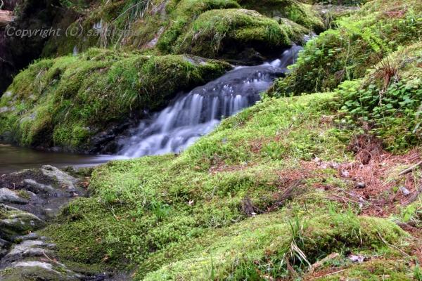 笠形山の滝2008