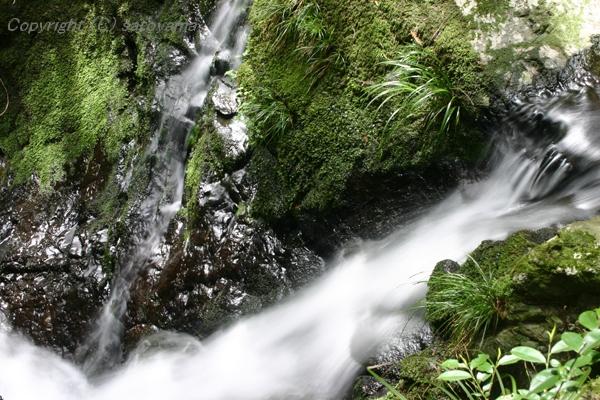 笠形山の滝2