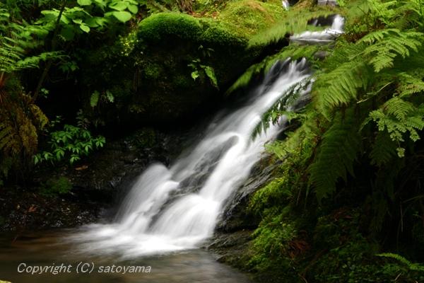 笠形山の滝3-1