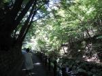 養老山道2
